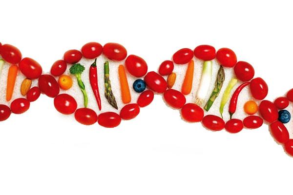 Nutrigenetica si basa sull'analisi dei polimorfismi genetici