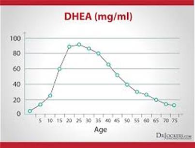 La curva DHEA