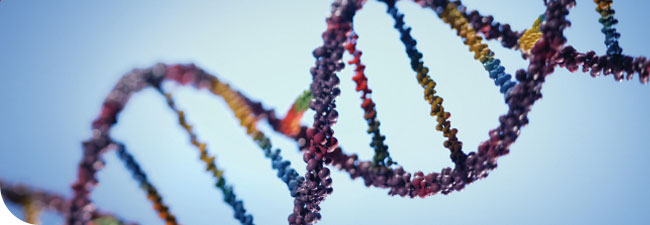 Il fattore genetico nell'infertilità