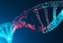 Danni al DNA e difetti di riparazione del DNA associati alla malattia e all'invecchiamento precoce